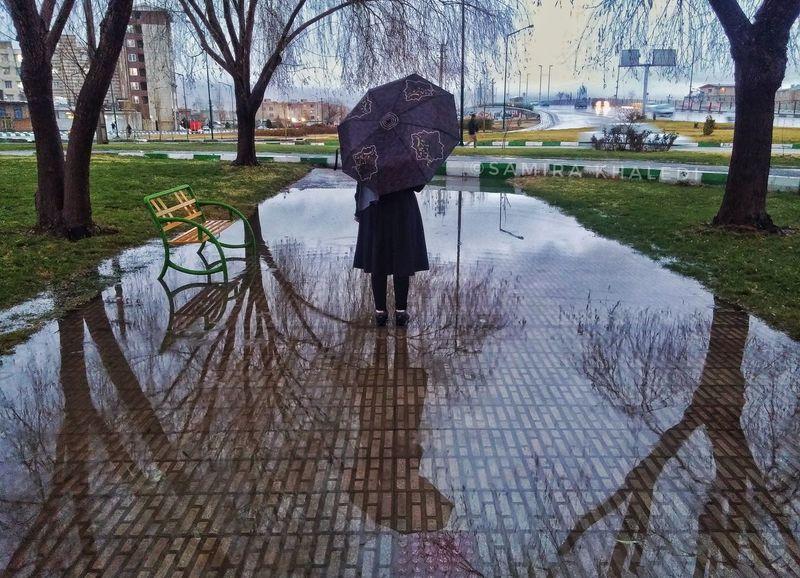 Rain Rainy Days Tree One Person Water Sky Reflection Alone Alone Time Umbrella Rainy Days☔ Raining Day Winter Winter Is Coming Winter 2016Love To Take Photos ❤ Nature Girl Girl Power Girls Iran Iranian_photography IranNature Iranshots Kermanshah