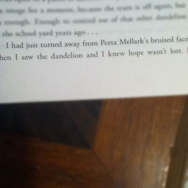 I'm honestly in love with this become already on ch. 8 (; but I love this line soo much Thehungergames Peeta Katniss
