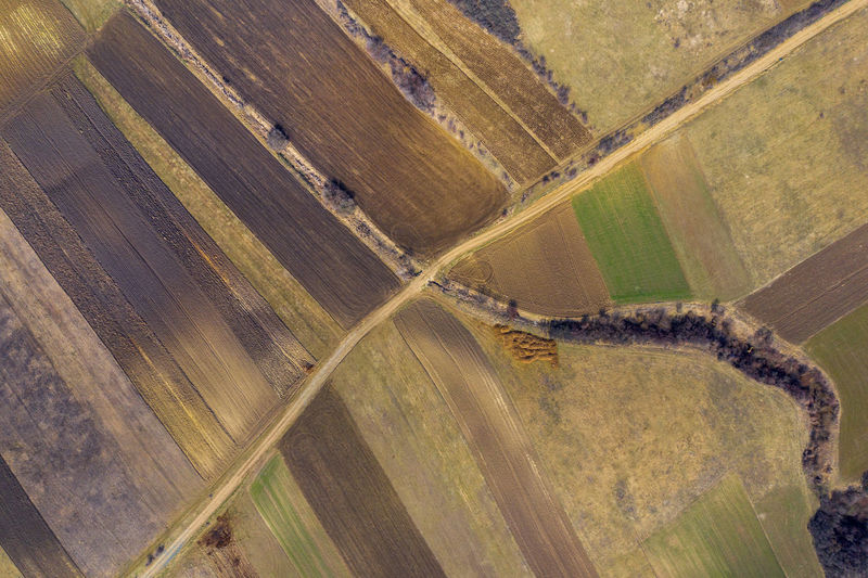 Aerial top view of plowed arable field in the spring, agricultural pattern, drone shot Landscape Environment Land Tranquil Scene Scenics - Nature Agriculture Nature No People Rural Scene Outdoors High Angle View Agriculture Tractor Tracks Agricultural Field Above View Aerial View Aerial Aerial Photography Aerial Shot Aerial Landscape Romania Drone  Dronephotography Drone Photography Droneshot