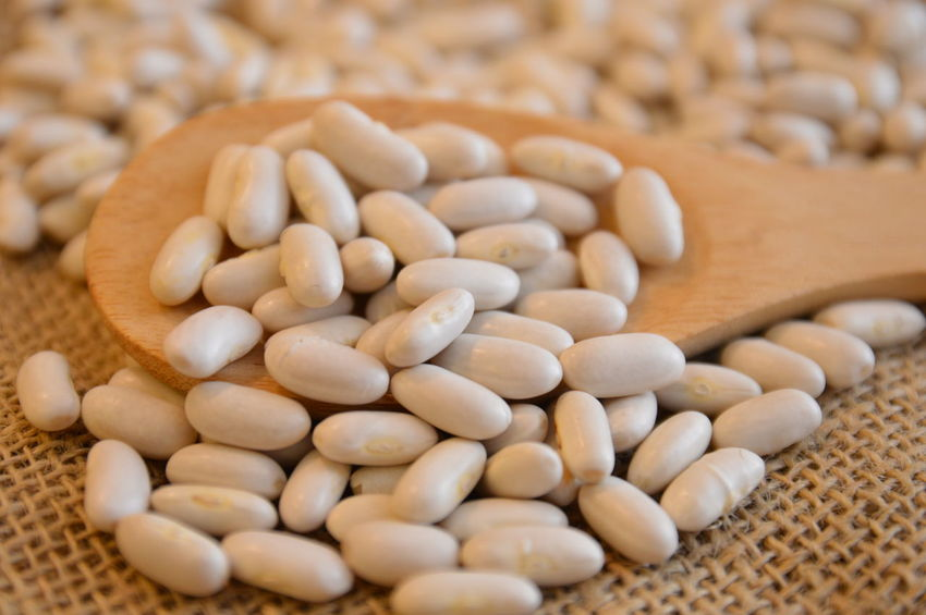 wood spoon white beans legumes Food And Drink Healthy Eating Food Cereal Plant Protein Raw Food Agriculture Nutritional Supplement No People Nature Close-up Vegetarian Food Indoors  Legume Family Day