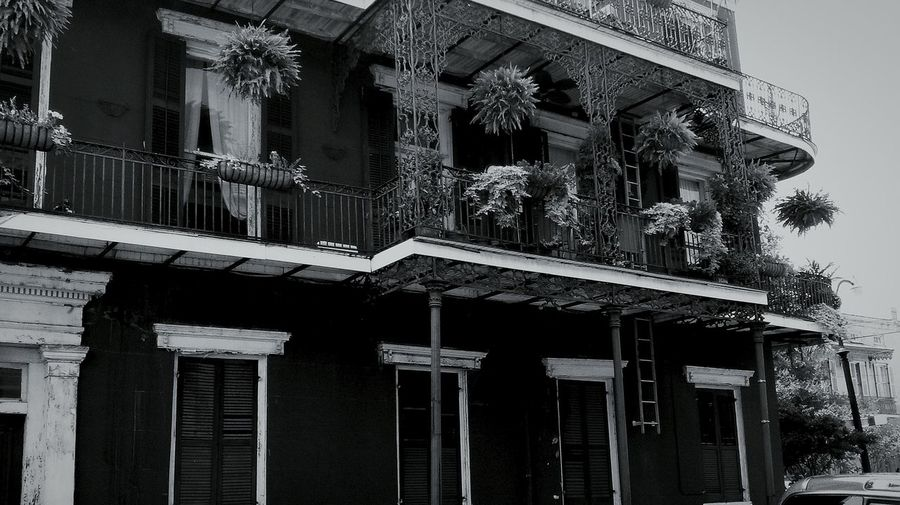 NOLA new orleans, louisiana Tourism balcony Wrought Iron Design hanging plants Taking Photos USA Photos Vacation Time Cityscape French Quarter Enjoying Life Summer Memories... Travel Photography Looking Up historical building The Irwin Collection Eyeem Photography EyeEm Gallery City Life Balcony Life Black And White PhotographyAmerican Life Walking Around Street Photography Famous City Welcome To Black