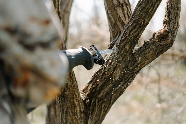 Close-up of a hand in protective gloves sawing a tree trunk with a hand saw