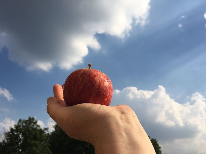Cropped hand holding apple against sky
