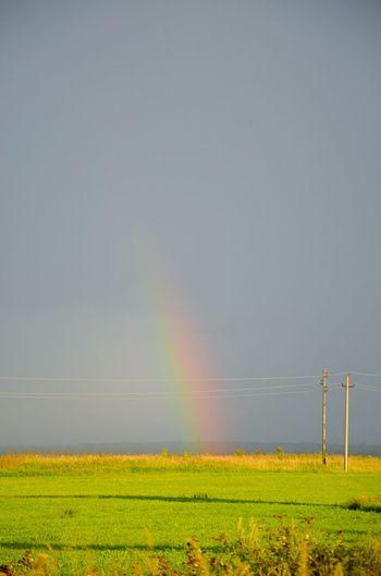 Rainbow Nature Harmony First Eyeem Photo