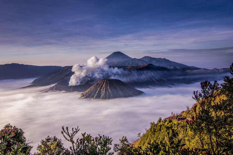 Misty Morning, Bromo Mount, Probolinggo - East Java, Indonesia Tree Mountain Volcano Sky Cloud - Sky Landscape Bromo-tengger-semeru National Park Foggy