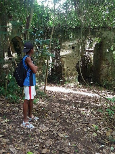 Old sugar plantation. Real PeopleOutdoors Nature EyeEm F4F EyeEm Selects Forest EyeEmNewHere 758 Caribbean Nature EyeEm LOST IN London