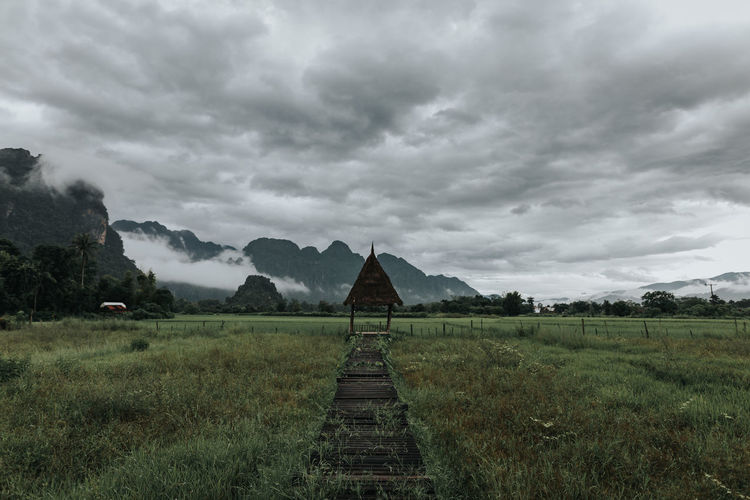 Green rice field and mountain background, vang vieng ,laos