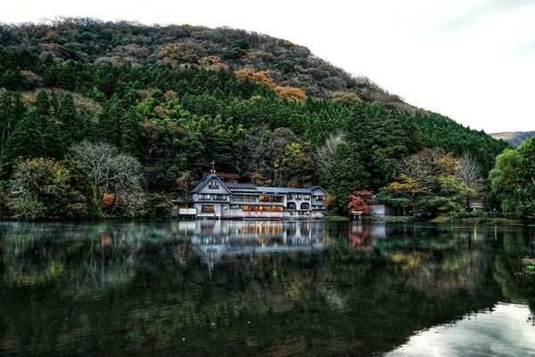 Japan Photos Treepark Reflection Water Lake Outdoors Tree No People Day Nature Sky Beauty In Nature Urban Nature Scenics Autumn Urban Landscape Multi Colored Growth Tranquility Landscape Freshness Hot Spring Water Rural Scene Architecture Streamzoofamily