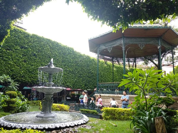 sin gente hubiera sido perfecta :P Tree Water Building Exterior Grass Green Color Gazebo Fountain