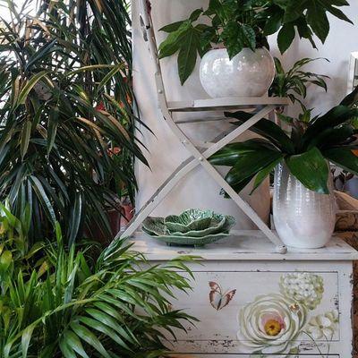 Green inspiration by Alea. happy St Patrick's day. Alefloristerias Decoracion Decoration Springiscomming