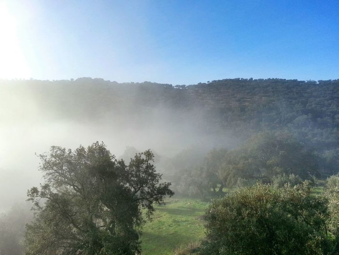 Fog is coming! 😲 La Codosera Badajoz Extremadura España SPAIN Nature Naturaleza Landscape Paisaje Fog Niebla