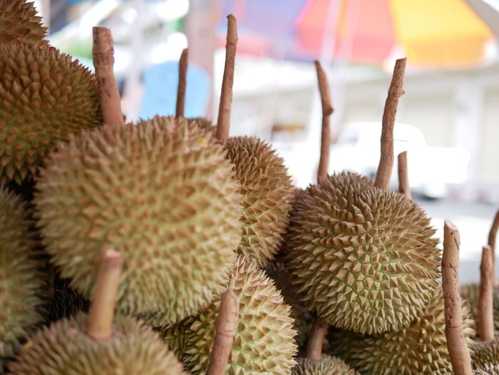 Thailand Durian season KarnYao Durian Fruit King Of Tropical Fruit Healthy Eating Focus On Foreground No People Freshness Food And Drink Close-up Plant Spiked Market Food Fruit Tropical Fruit Day Wellbeing Outdoors Large Group Of Objects Retail  Still Life Nature Spiky Ripe Thailand Fruits The Foodie - 2019 EyeEm Awards