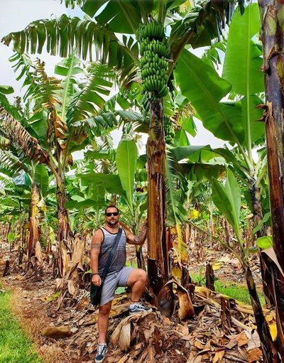 Tropical Climate Growth Plant Tree Real People One Person Full Length Sitting Leisure Activity Banana Tree Lifestyles