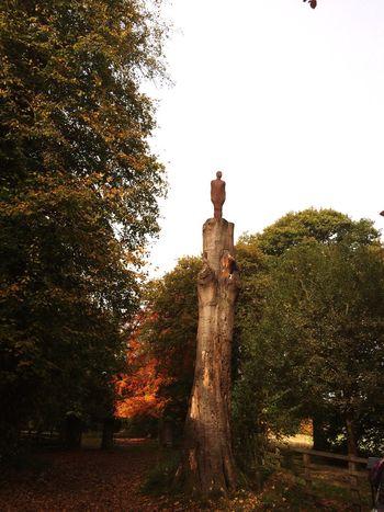 Anthony Gormley Walking Around Autumn