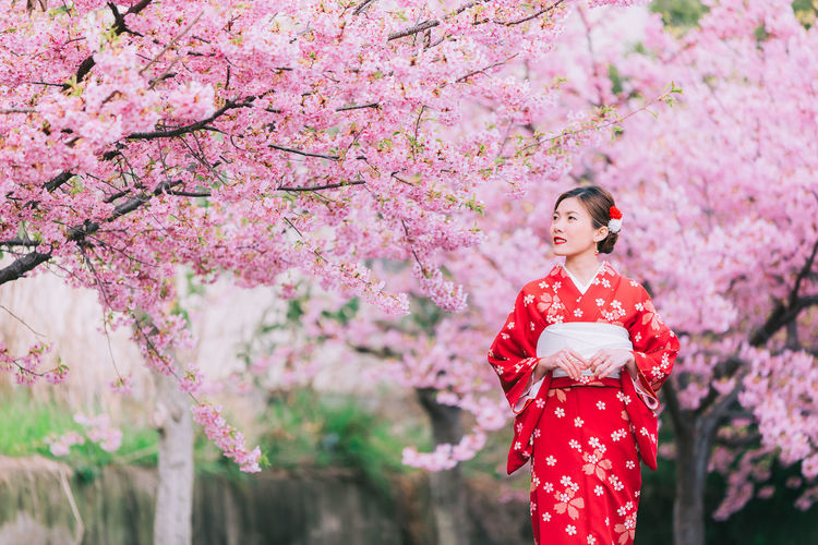 Woman in kimono standing against pink cherry blossoms