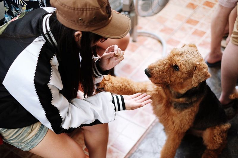 EyeEm Selects Real People Mammal One Person Women One Animal Lifestyles Leisure Activity Domestic Domestic Animals Pets High Angle View Hat Adult Canine Midsection Dog Holding Teddy Bear Pet Owner