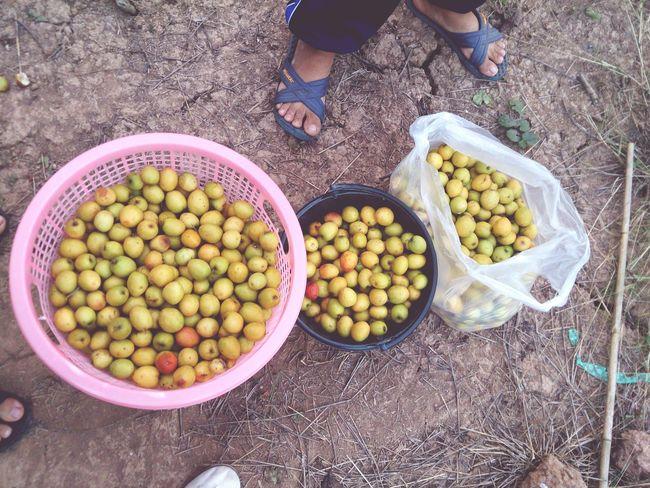 Thailand Eat More Fruit Fruit