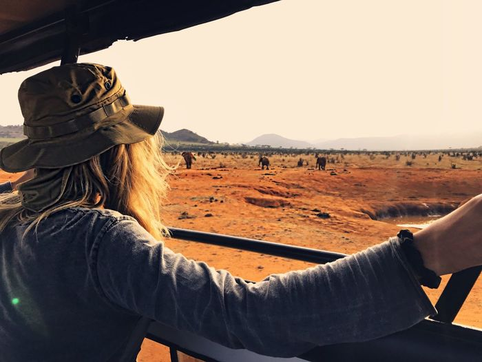 Rear view of woman in off-road vehicle looking at elephants at national park