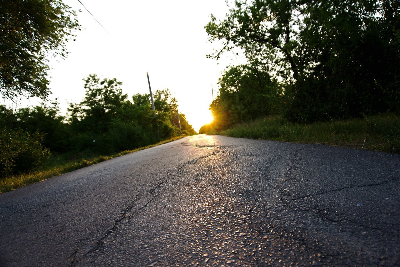 tree, road, the way forward, transportation, diminishing perspective, no people, nature, sunlight, sunset, sun, outdoors, asphalt, tranquil scene, scenics, growth, tranquility, day, clear sky, beauty in nature, landscape, sky, grass