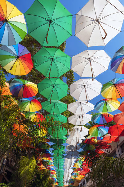 Cyprus Green Color Nicosia, Cyprus Northern Nicosia Street View Trnc Alleyway Colorful Day Hanging Low Angle View Multi Colored No People Outdoors Rainbow Colours Street Umbrellas Variation White