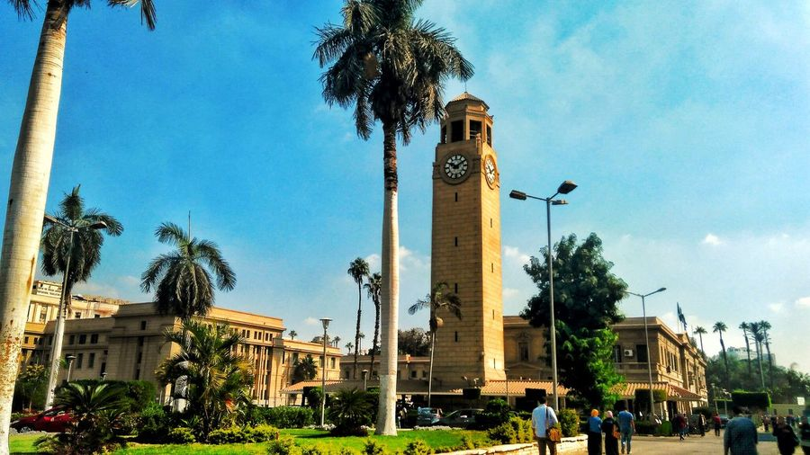 Tree Sky Architecture Building Exterior Built Structure Day Outdoors Large Group Of People Low Angle View Palm Tree People Eyemselects Arts Culture And Entertainment Egyptdairies Clear Sky Egyptphotography Natgeoyourshot Tranquility This Is Egypt ❤ Egyptdailylife Cairo Egypt Streetphotography Eyem Best Shots Scenics Nature