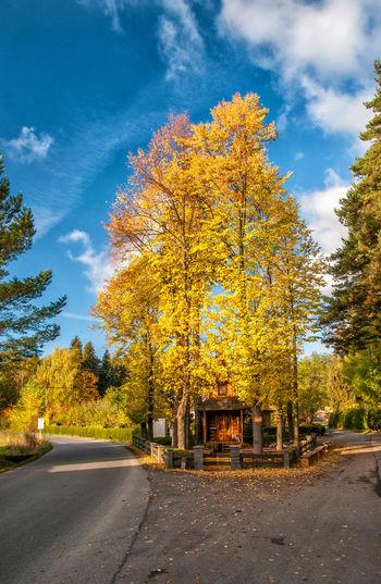 Autumn Cloud -