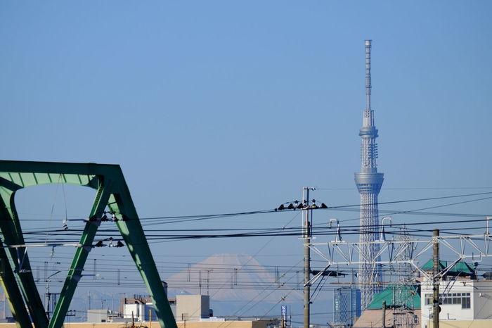 市川橋から東京スカイツリー&富士山を望む。 Cable Fujifilm Fujifilm X-E2 Fujifilm_xseries Fujiyama Mt.Fuji Outdoors Power Line  Skytree Structure Tokyo Skytree Tower Xc50230 天空樹 富士山 晴空塔 東京スカイツリー