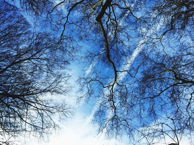 That beautiful sky Nature Mothernature