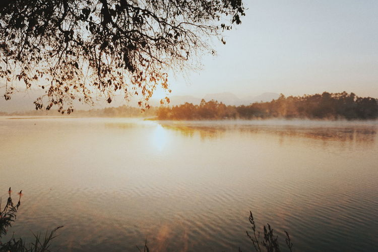 Reflection Water Autumn Nature Lake Fog Scenics Sky No People Outdoors Tree Beauty In Nature Day Sunrise Tranquility EyeEm Photo Of The Day Eyeem Photo Of The Week Paint The Town Yellow The Week On EyeEm Been There. Done That. Bandung INDONESIA