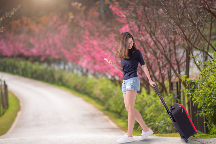 Woman traveler with suitcase in the cherry blossom park , travel , asia One Person Casual Clothing Plant Hair Full Length Road Real People Long Hair Transportation Young Adult Leisure Activity Tree Young Women Focus On Foreground Hairstyle Women Nature Lifestyles Day Outdoors Shorts Travel Tourist Sakura Blossom Cherry Blossom Asian  Girl Cute Pretty Beautiful Beauty In Nature Garden Relax Resting