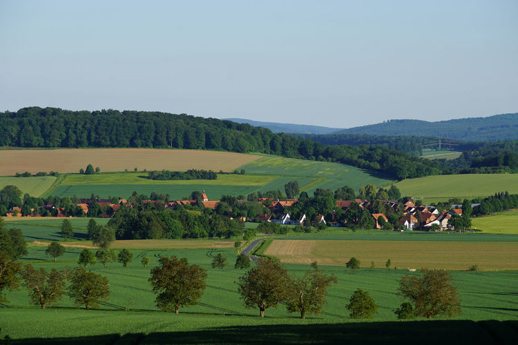 Agriculture Beauty In Nature Clear Sky Day Field German Coutryside Germany Growth Landscape Nature Outdoors Rural Rural Scene Scenics Sky Small Town Town Town In Distance Tranquil Scene Tranquility Tree