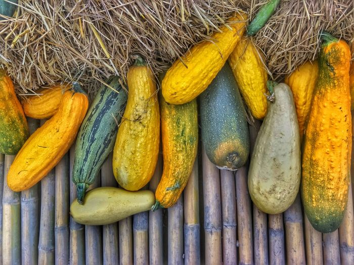 Agriculture Squash - Vegetable Vegetable Squash Straw Bamboo Bamboo Background Harvest Season Yellow High Angle View No People Food Healthy Eating