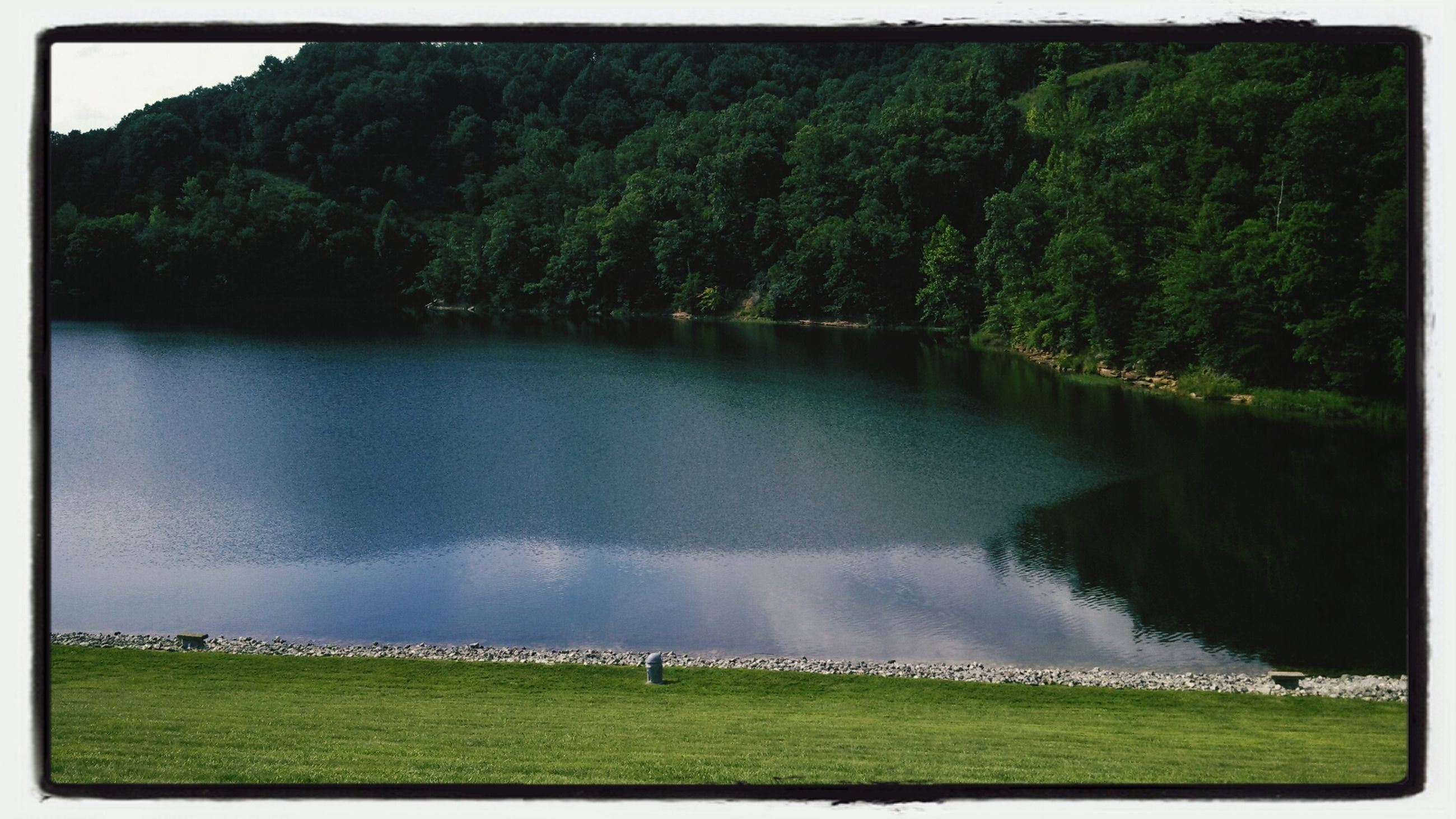 transfer print, water, auto post production filter, tree, tranquil scene, scenics, tranquility, beauty in nature, lake, grass, nature, reflection, green color, river, idyllic, sky, landscape, growth, panoramic, outdoors