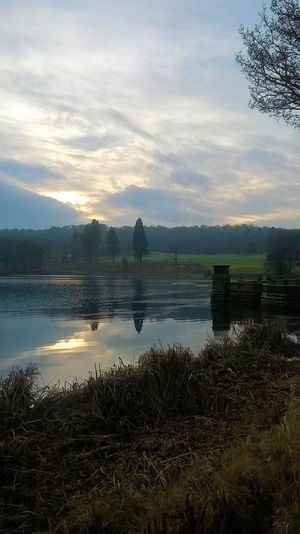 Beauty In Nature Day Lake Nature No People Outdoors Reflection Scenics Sky Tranquil Scene Tranquility Tree Water Trentham Gardens Staffordshire