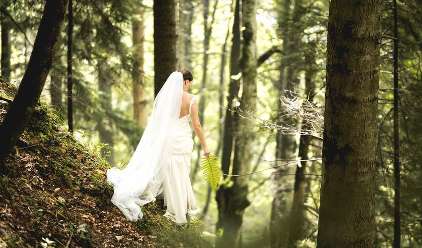 Running bride Fern Forestwalk Lonely Hightrees Silence Forest Photography Back Travel Destinations Moment Newbeginnings Runway Alonebrideintheforest Runningbride Bride Wedding Dress Tree Young Women Forest Life Events Wedding Tree Trunk Full Length Women Groom Veil Wedding Ring Engagement Ring Ceremony