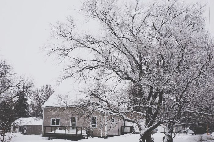 Winter Bare Tree Snow Cold Temperature Tree Building Exterior Architecture Built Structure House Branch Day Sky Outdoors Residential Building No People Snowing Nature Beauty In Nature Detached House