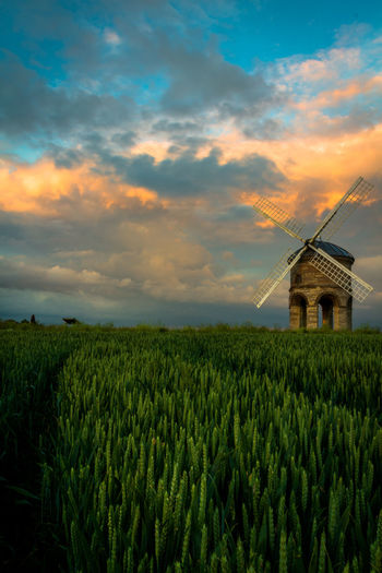 Chesteron Windmill at Sunset Agriculture Beauty In Nature Cloud - Sky Crop  Field Growth Heritage Heritage Building History Landscape Nature No People Outdoors Rural Scene Scenics Sky Sunset Tranquil Scene Windmill