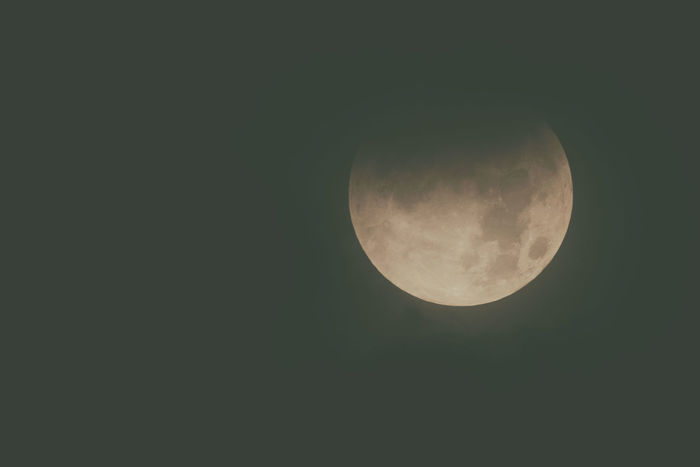 View of the moon during an eclipse. Astronomy Beauty In Nature Clear Sky Close-up Copy Space Eclipse Low Angle View Moon Moon Eclipse Moon Surface Nature Night No People Outdoors Scenics Sky Tranquil Scene