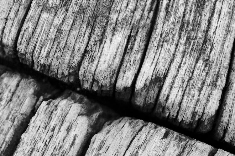 Rough Grain Black & White Weathered Wood Grain Backgrounds Blackandwhite Close-up Day Grain Nature No People Outdoors Textured  Weathered Wood Wood - Material