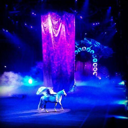 Circus BarnumandBailey