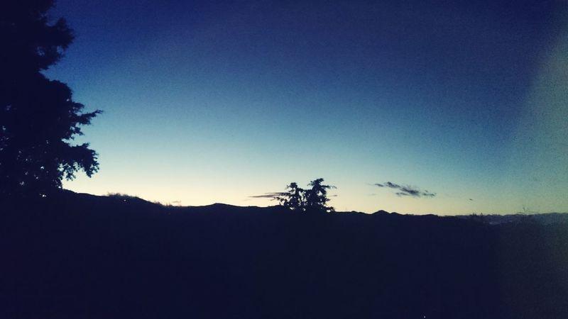 horizon Landscape Tree Sky