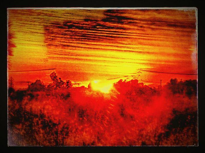 Beautiful Sanmarcos Rhiannon Sun Rise Up Relaxing Enjoying The Sun