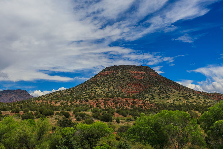 AZ Mesa AZ Mesa S Beauty In Nature Blue Cloud Cloud - Sky Cloudy Everyday Life In AZ Green Green Color Growth Hill Idyllic Landscape Mountain Mountain Range Nature No People Non-urban Scene Outdoors Remote Scenics Sky Tranquil Scene Tranquility Tree