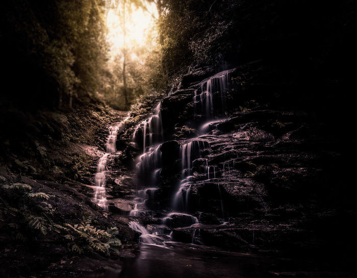 Step in to the light 💛 No People Water Motion Outdoors Nature The Great Outdoors - 2017 EyeEm Awards Tranquility Waterfall Beauty In Nature Defocused Springtime Landscape Photography Growth Selective Focus National Park Travel Australia Australia Blue Mountains National Park New South Wales  Fine Art Photography Forest Perspectives On Nature Shades Of Winter
