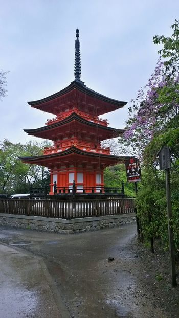 Rainy Day In Kyoto Spring In Japan Japan Culture Kyoto Temple Temples And Shrines Kyoto, Japan Kyoto Outdoors Rainy Day Japan Photography Culture Of Japan Touristic Destination Tourism Travel Built Structure Travel Destinations Architecture History Religion Red Religion And Tradition Cultural Heritage Religion And Beliefs Smartphone Photography Smartphonephotography