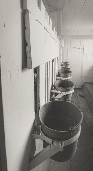 Buckets Livestock Bw Day Goat Life Goatfarm Indoors  Monochrome monochrome photography No People