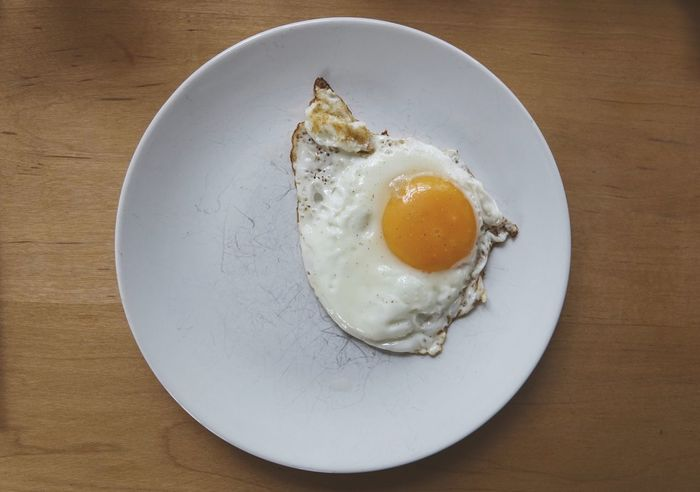 Fried egg on a plate Lonely Eggs... Egg Fried Friedegg Friedeggs Cooking Cooking At Home Breakfast Food Food And Drink Plate High Angle View Spiegelei Eier