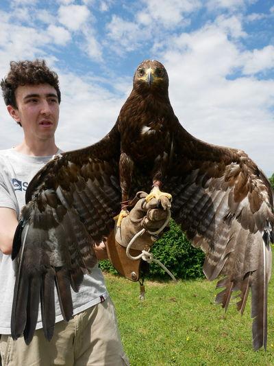 EyeEm Selects Portrait Men Sky Grass Cloud - Sky Bird Of Prey Eagle - Bird Eagle