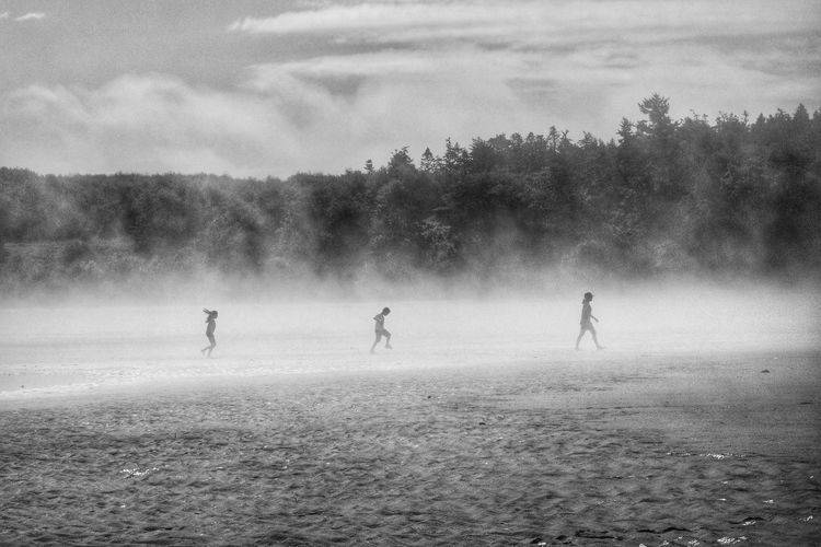 following on the beach. False Bay San Juan Islands Washington State Playing Beach Silhouettes From The Side Misty Misty Morning Travel Adventure Three People On The Way Adventure Club Eyeemphoto People And Places Black And White Collection  Weather People Out For A Walk Walking Monochrome Photography My Year My View Live For The Story The Great Outdoors - 2017 EyeEm Awards