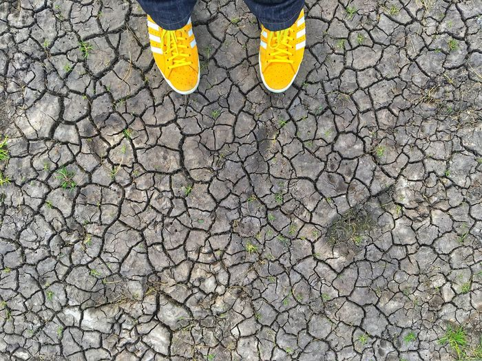 From My Point Of View Shoes Yellow Ground Cracked Drought Nature Spring